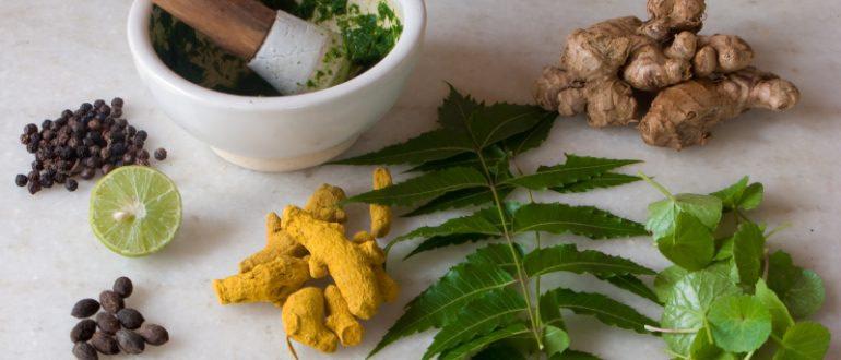 Аденома простаты: лекарственные травы для лечения